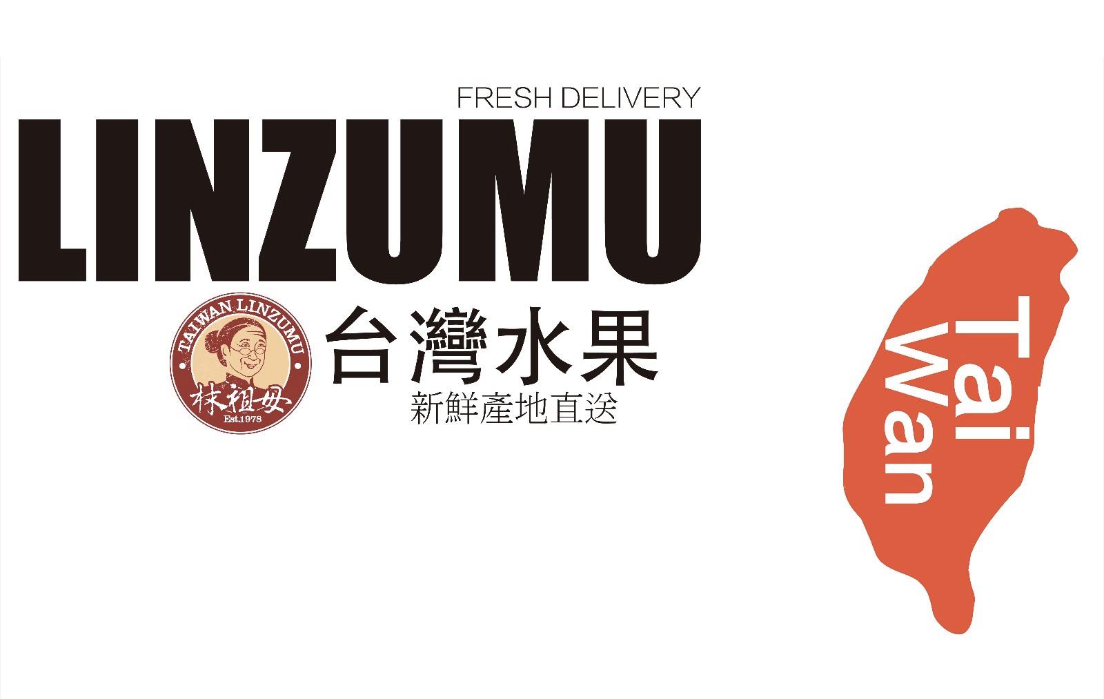 LINZUMU  - Magazine cover