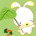 小兔子的糖果 體育競技 App LOGO-硬是要APP