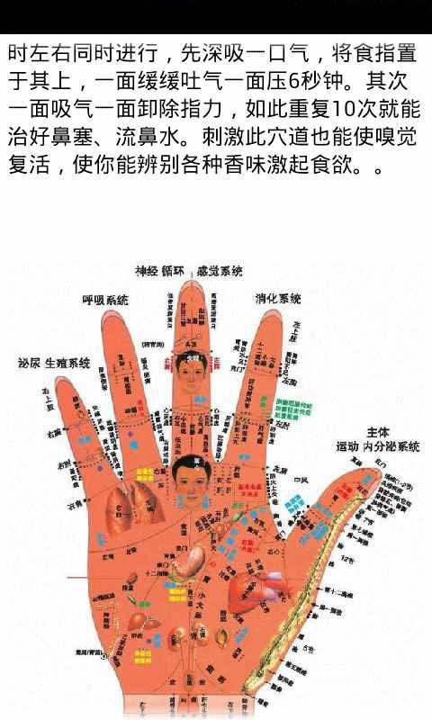 免費生活App|人体穴位中医按摩图(高清版)|阿達玩APP