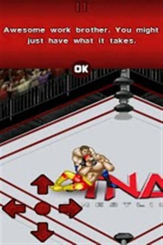 摔跤比赛 Wrestling Competition