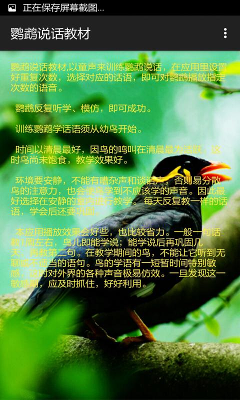 鹦鹉说话教材-应用截图