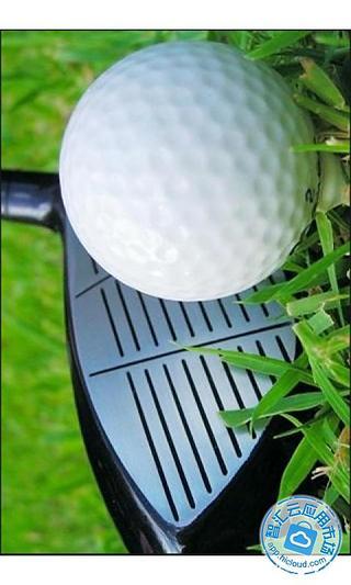 高尔夫视频