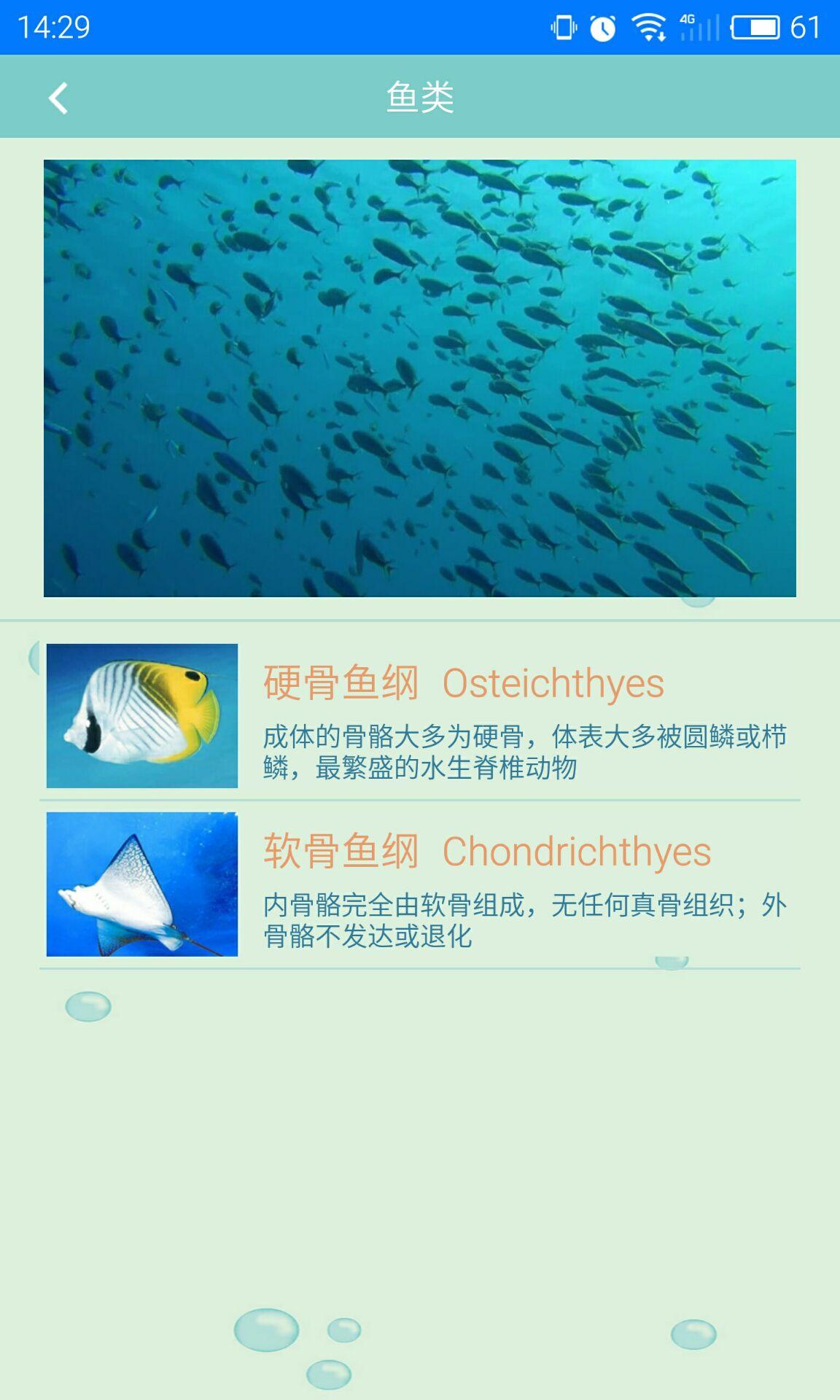 海洋生物-应用截图