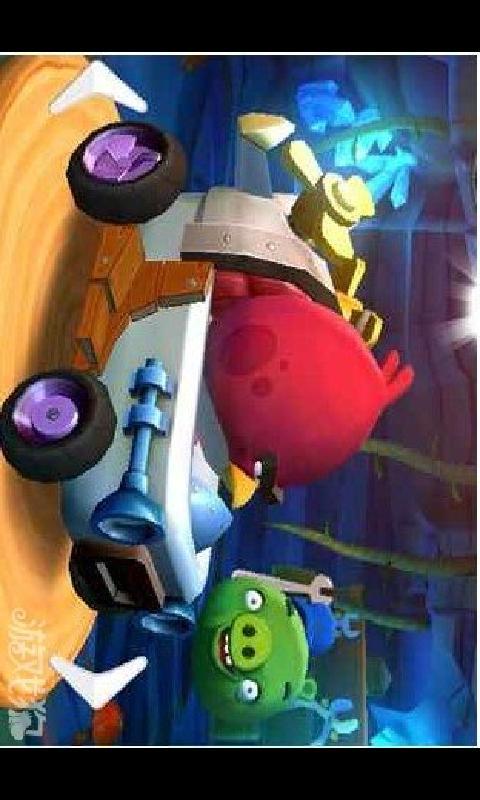 愤怒的小鸟Go3D赛车