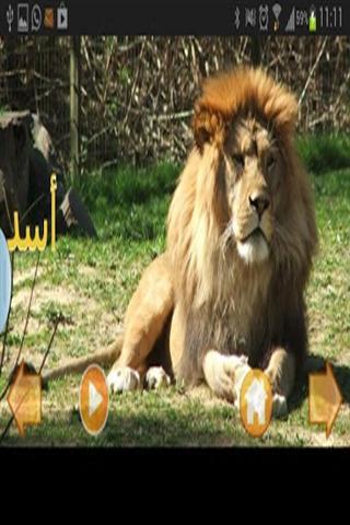 玩棋類遊戲App|动物世界 Animal World免費|APP試玩